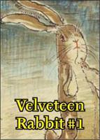 Velveteen Rabbit #1