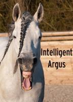Intelligent Argus