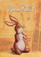 Velveteen Rabbit #3