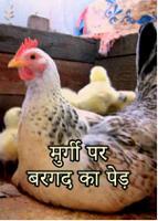 मुर्गी पर बरगद का पेड़