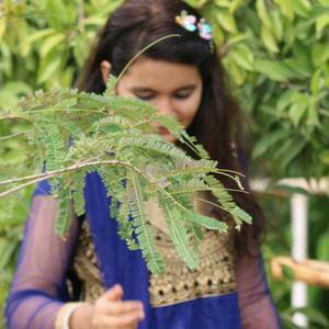 Kaniz Fatimah Shaikh | StoryMirror