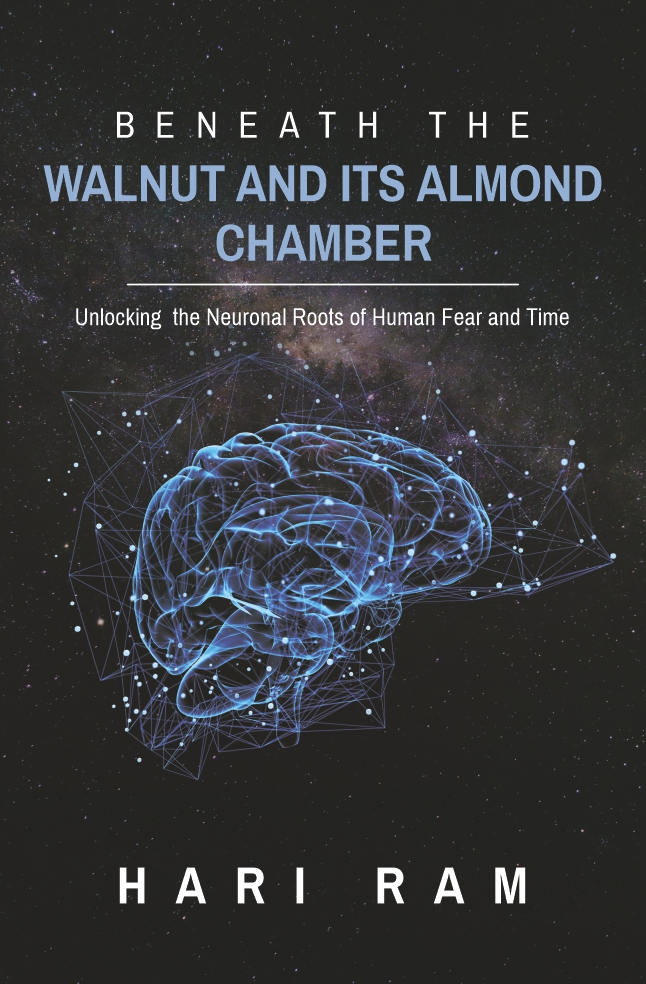 Beneath the walnut & Its Almond Chamber